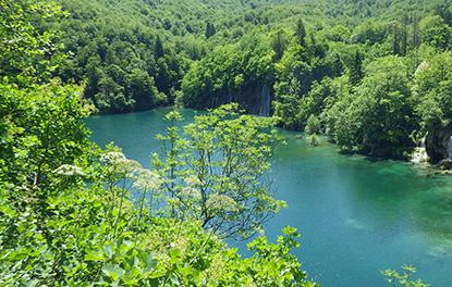 Kinh nghiệm du lịch phượt Khu du lịch sinh thái hồ Quang Minh