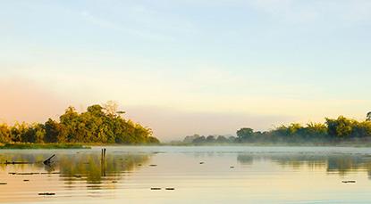 Kinh nghiệm du lịch phượt Vườn quốc gia Nam Cát Tiên