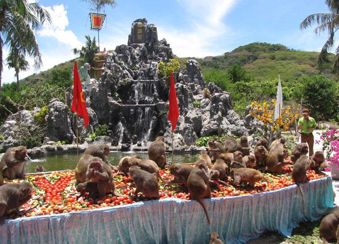 Đảo khỉ Nha Trang