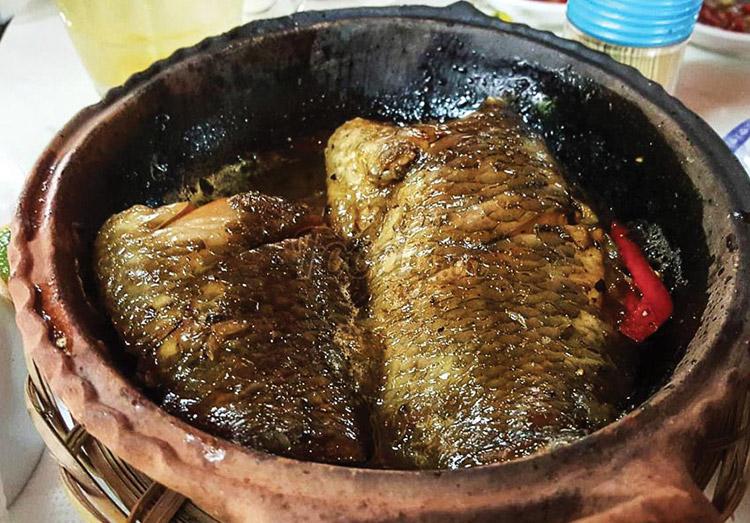 Cá rô rừng, cá lóc Vườn quốc gia Nam Cát Tiên