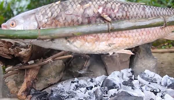Cá trầm hương Cao Bằng