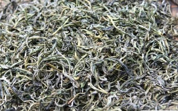 Chè Tà Xùa Sơn La