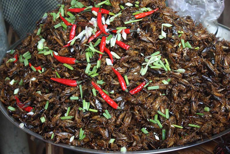 Dế chiên tẩm ớt Campuchia