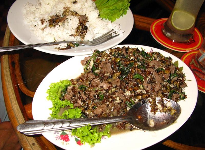 Thịt bò xào kiến Campuchia
