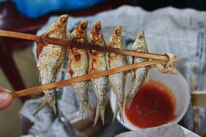 Cá nướng Ba Bể Bắc Kạn