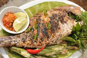 Cá Tà Ma Lý Sơn