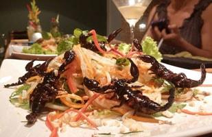 Món ăn từ côn trùng Campuchia