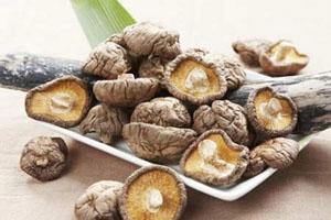 Nấm hương Sapa Lào Cai