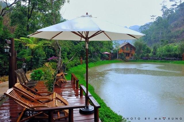 Cafe Ma Rừng Lữ Quán Đà Lạt