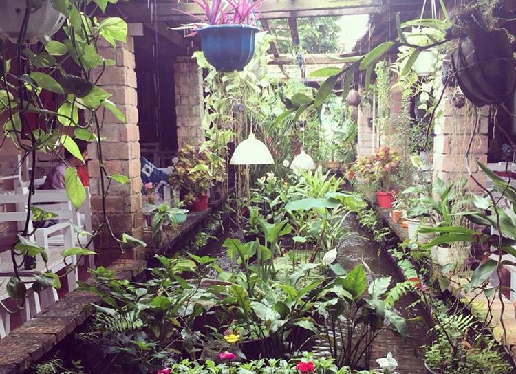 Cafe Mưa Vĩnh Long