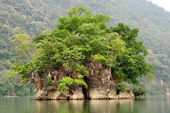 Đảo Bà Góa Hồ Ba Bể