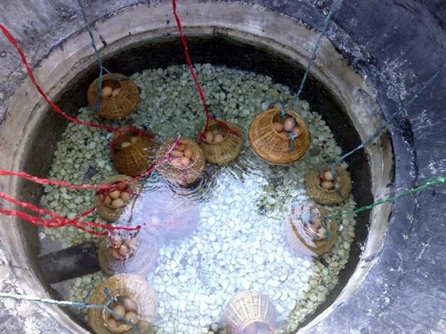 Khu giếng trời Suối nước nóng Bình Châu