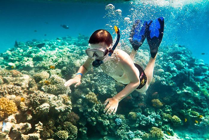 Lặn biển ngắm san hô Côn Đảo