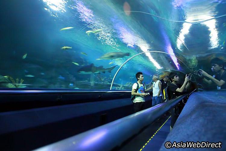 Thủy cung Aquaria KLCC