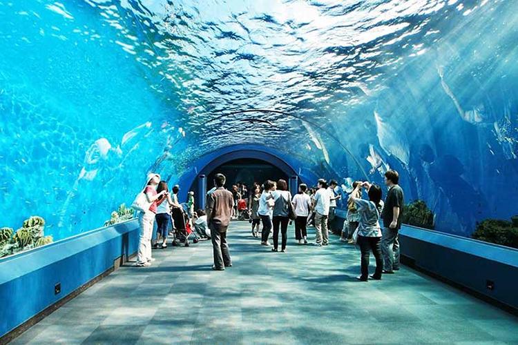 Thủy cung Pattaya