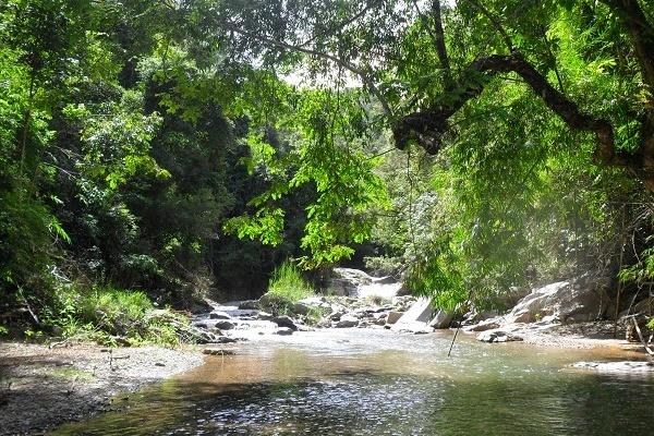 Vườn quốc gia Chư Mom Rây