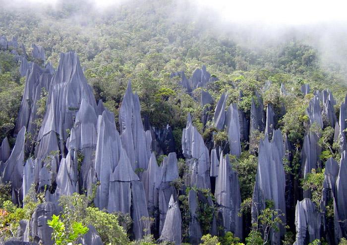 Vườn quốc gia Gunung Mulu
