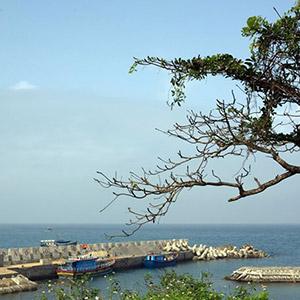 Đảo Cồn Cỏ
