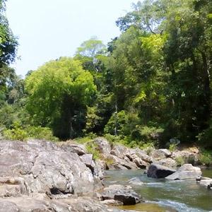 Khu bảo tồn thiên nhiên Kon Ja Răng Gia Lai