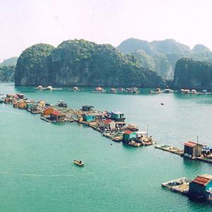 Vịnh Lan Hạ Hải Phòng