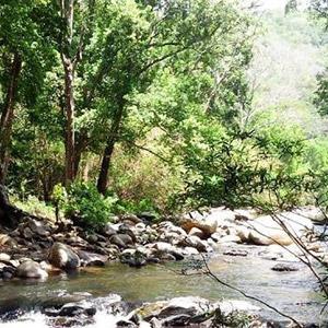 Vườn quốc gia Chư Yan Sin Đắc Nông