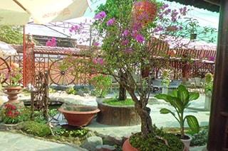 Cafe Châu Long Tây Ninh