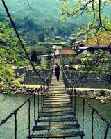Cầu Mây Sa Pa