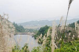 Hồ Ly (Hồ Thượng Long) Phú Thọ