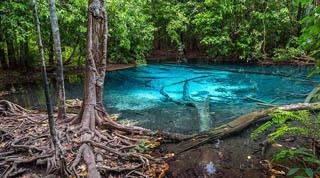 Hồ ngọc bích Emerald