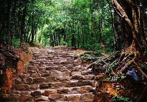 Rừng quốc gia Yên Tử